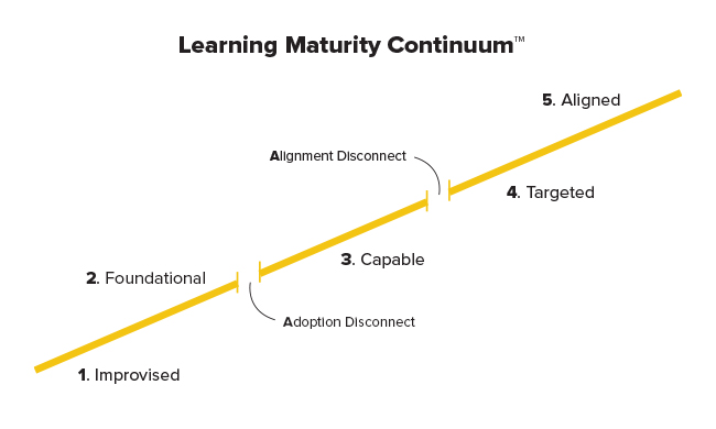 Learning-Maturity-Continuum