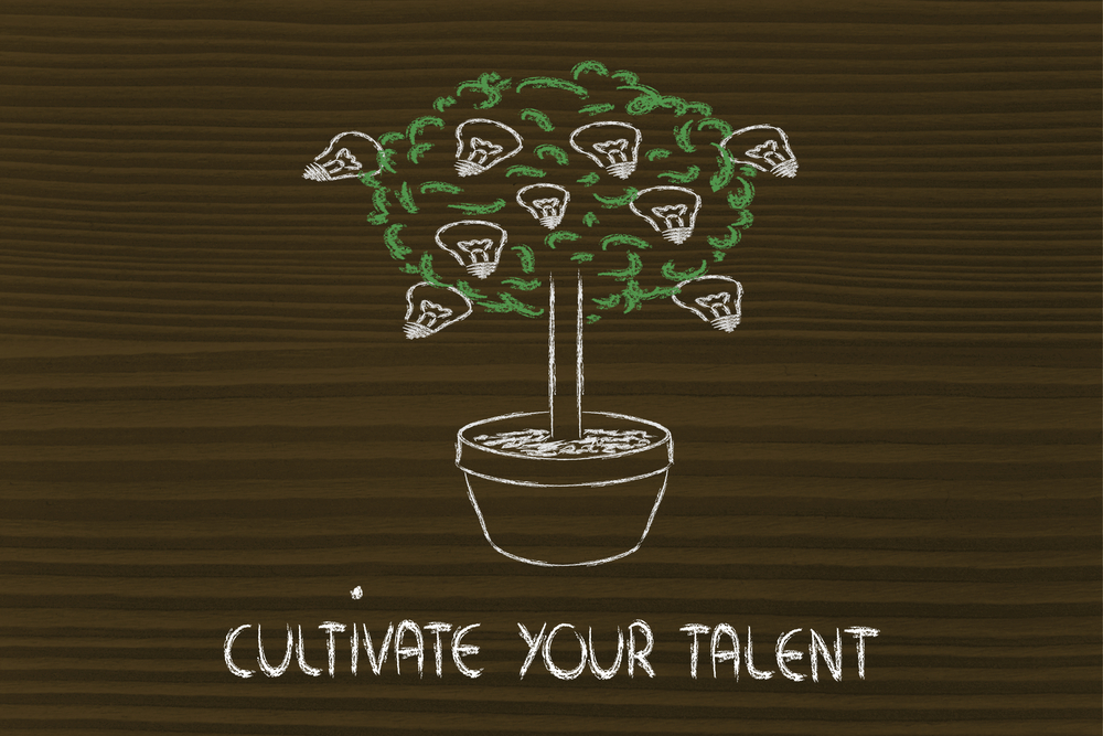 "Talent Management Myths Drawing of a growing bush in a pot with the words ""Cultivate Your Talent"""