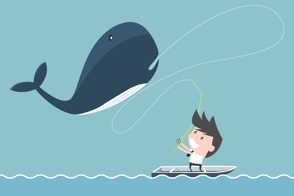 Cartoon of a businessman with a big whale on the line. Might he Lose a Key Account?