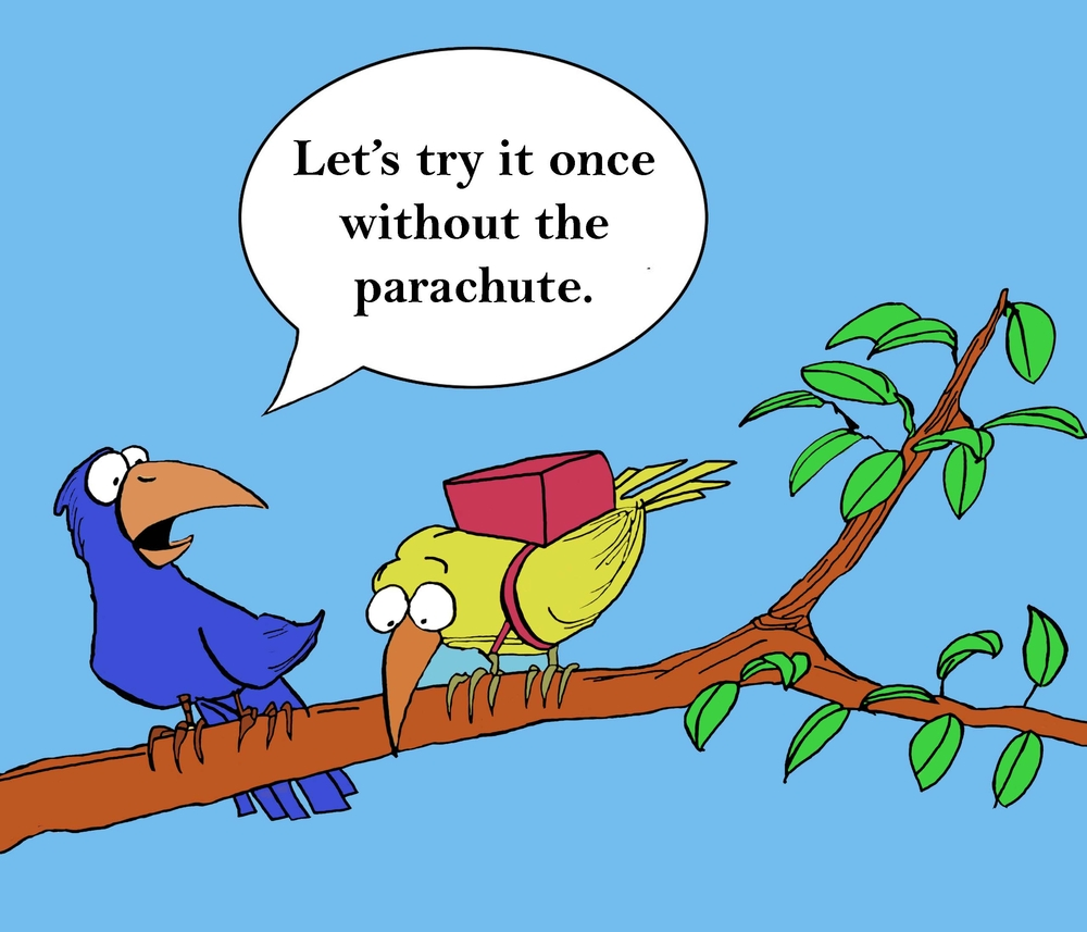 cartoon of a scared bird about to fly without a parachute much like managers working without Tips for First Time Managers